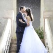 Photo of a bride and groom's first kiss.