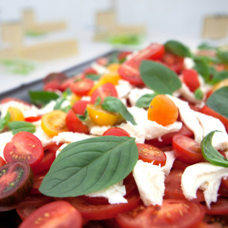 Photo of a tomato and mozzarella platter at an event catered by Beetham Food.
